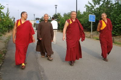 gosok-rinpoche-a11-19