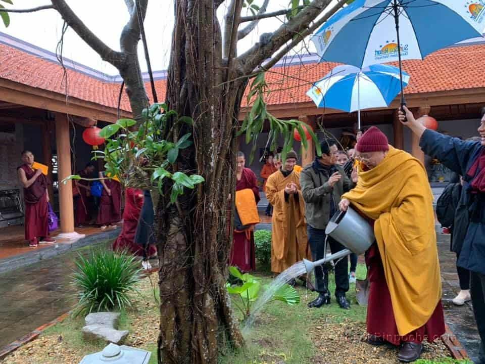 Gosok Rinpoche - Vietnam 20190118030552498