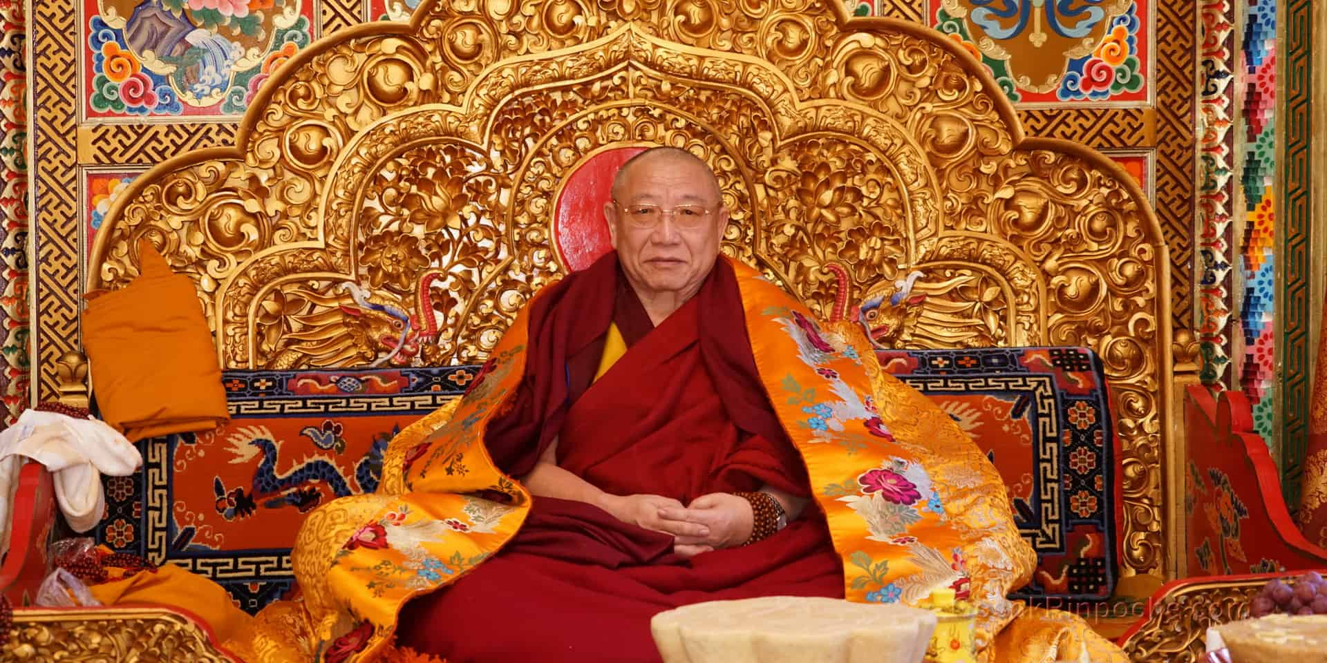 Gosok Rinpoche DSC00108 1920