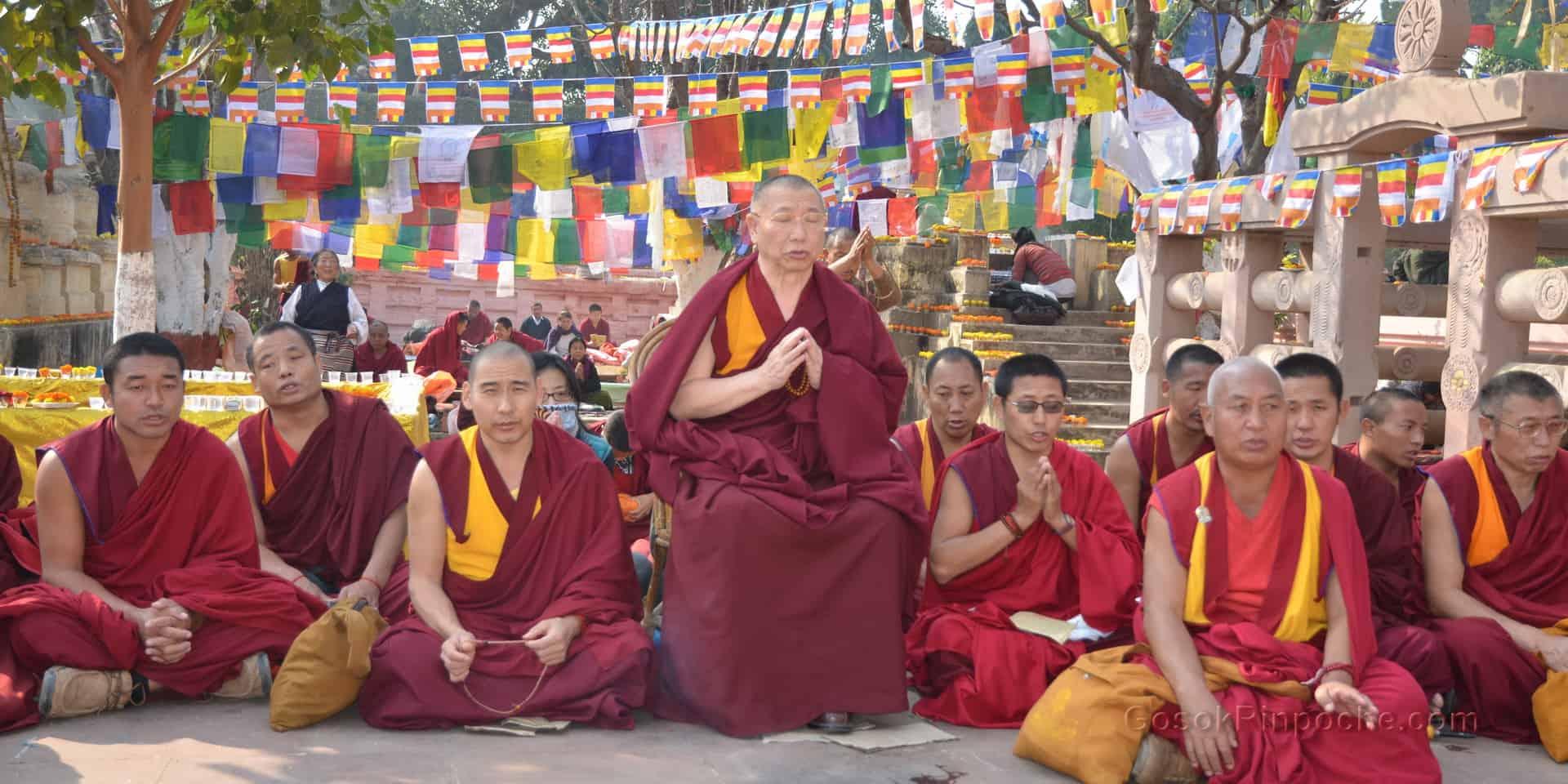 Gosok Rinpoche India 2012 DSC 1264 1920