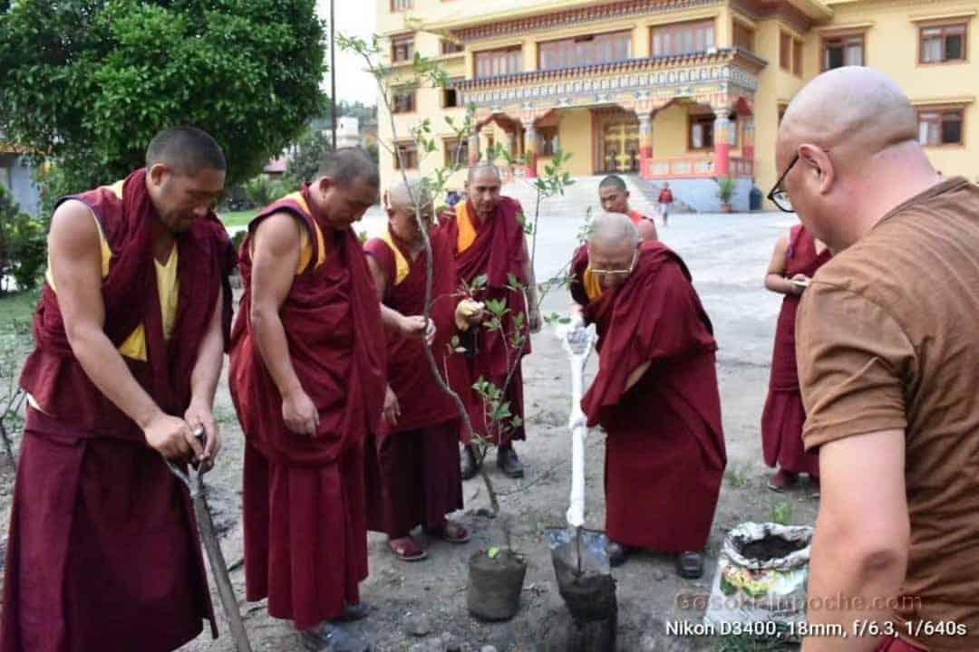 Gosok Rinpoche Nepal 20200615220027