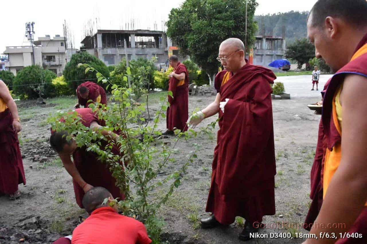 Gosok Rinpoche Nepal 20200615220535