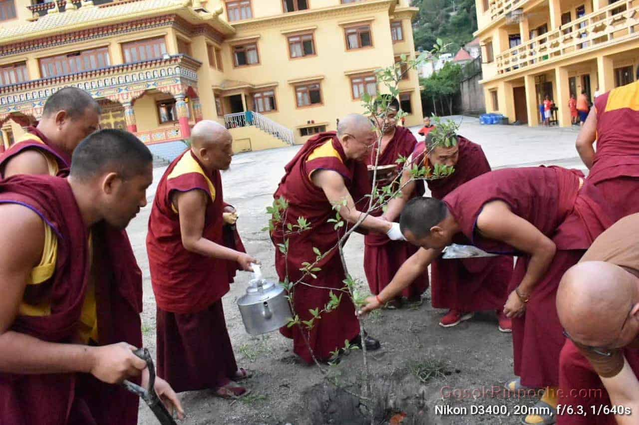 Gosok Rinpoche Nepal 20200615220546