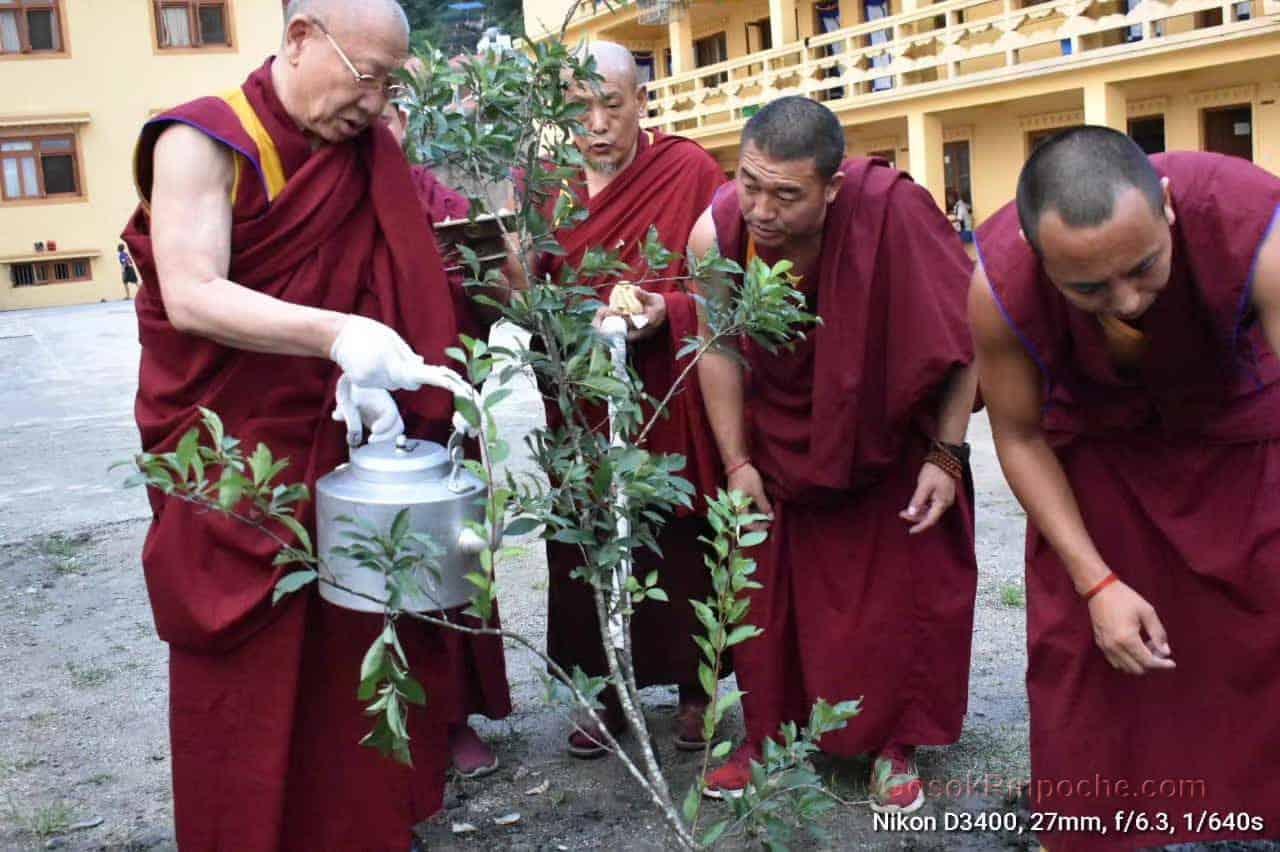 Gosok Rinpoche Nepal 20200615220556