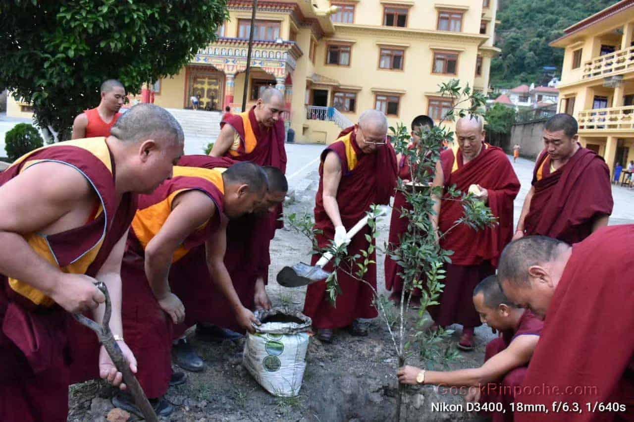 Gosok Rinpoche Nepal 20200615220605