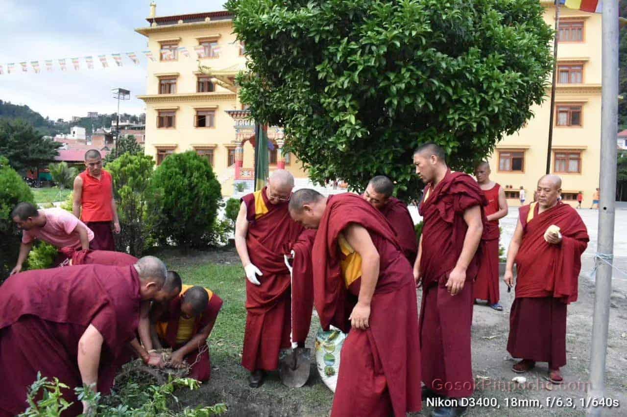 Gosok Rinpoche Nepal 20200615220615